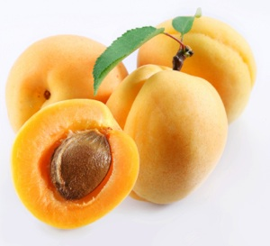 http://boomerwellness.files.wordpress.com/2010/07/apricots300x273.jpg?w=417&h=379